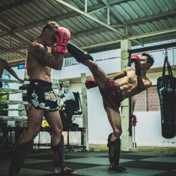 MMA Shin Guards